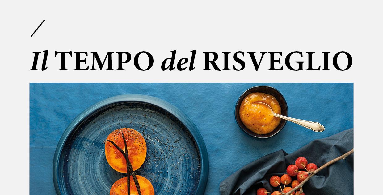 cover_Il-tempo-del-risveglio-regia-comunicazione_covid